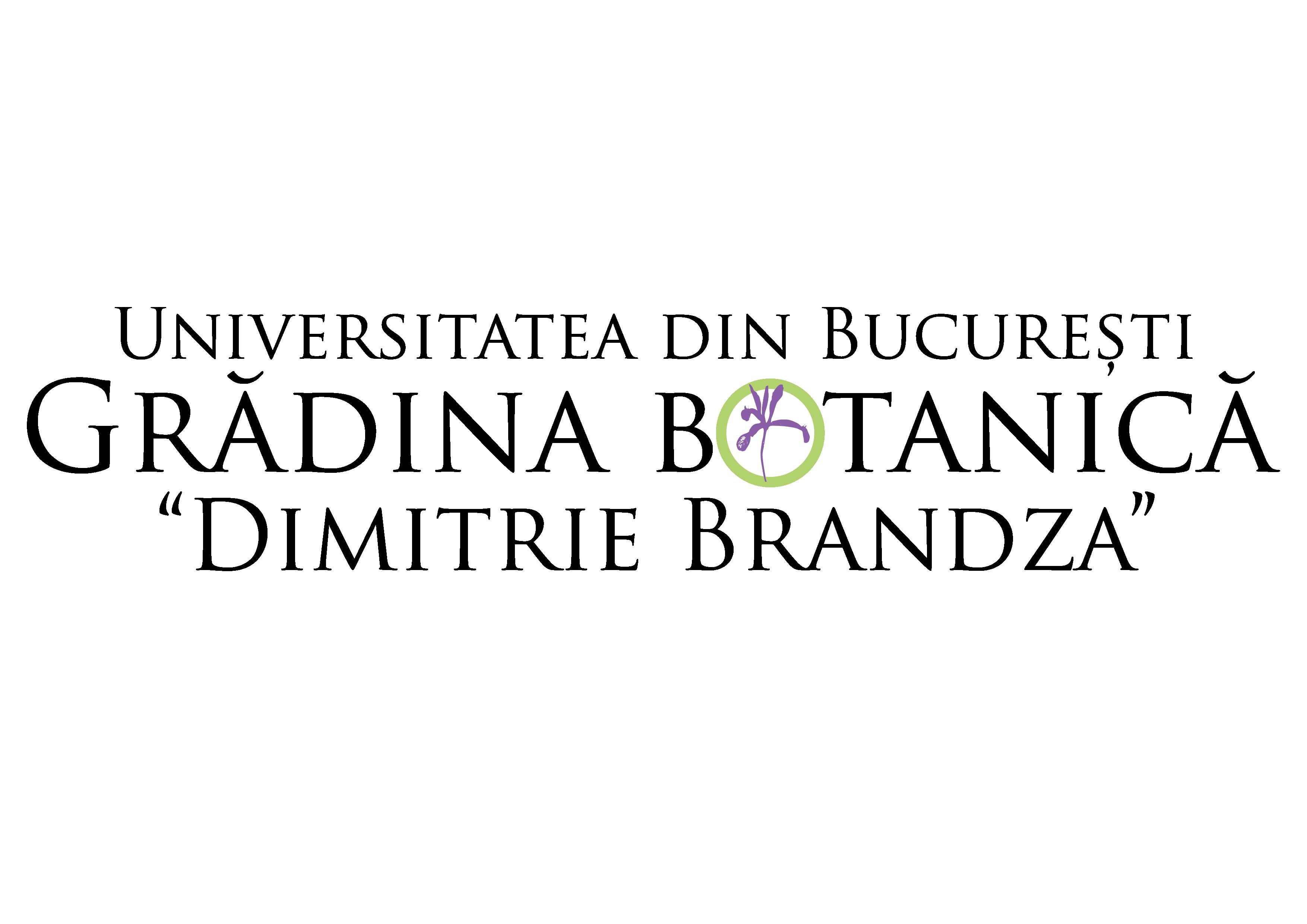 Logo UBGBDD-01